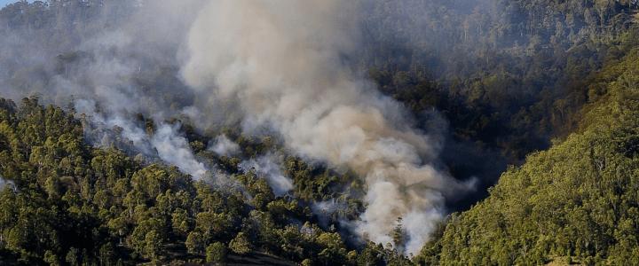 如何在野火煙霧和空氣質量差的情況下保持安全
