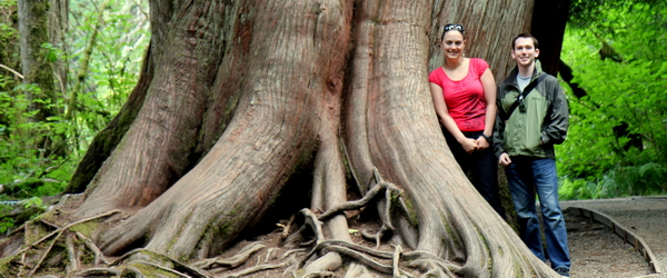 MacMillan Park tree2h